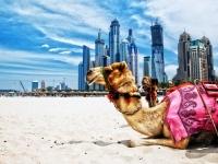 ISTANBUL I DUBAI